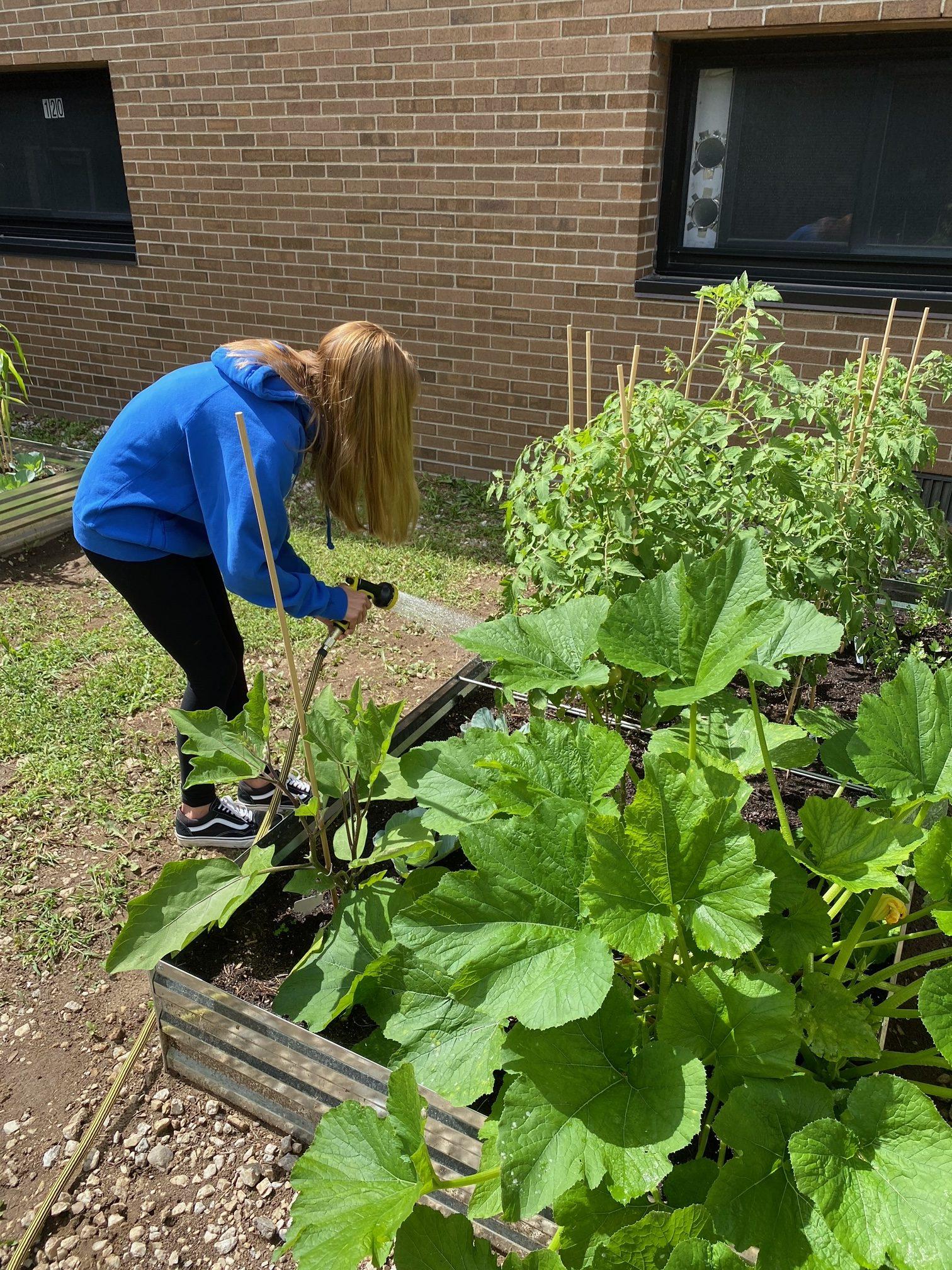 New Community Garden in Kinnelon